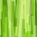 abstract bamboo background 4k